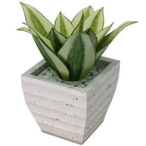Papercraft imprimible y armable de la Planta Sansevieria. Manualidades a Raudales.
