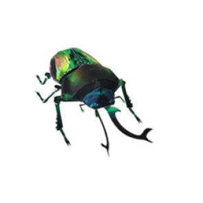 Papercraft recortable del Escarabajo Arcoiris / Rainbow Beetle. Manualidades a Raudales.