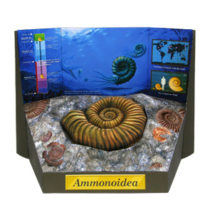 Papercraft de un Fósil de Ammonite. Manualidades a Raudales.