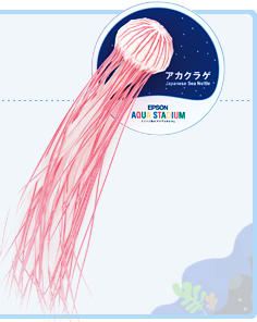 Papercraft de una Medusa. Manualidades a Raudales.