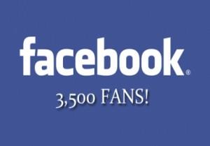 3500 seguidores de Facebook en Manualidades a Raudales.