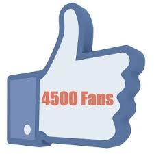 Manualidades a Raudales a alcanzado los 4500 seguidores en Facebook.