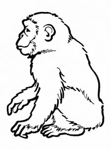 Fichas para colorear dibujos de monos. Manualidades a Raudales.