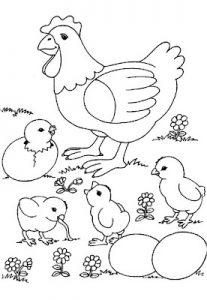 Fichas para colorear dibujos de gallinas. Manualidades a Raudales.