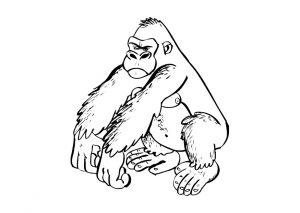 Fichas para colorear dibujos de gorilas. Manualidades a Raudales.
