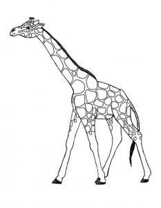 Fichas para colorear dibujos de jirafas. Manualidades a Raudales.